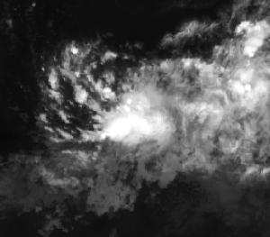 A Tropical Disturbance